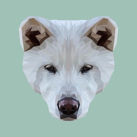 akita: Akita Inu dog animal low poly design. Illustration