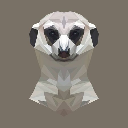 mongoose: Mongoose animal low poly design. Illustration