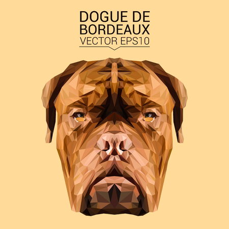 Dogue de Bordeaux low poly design.