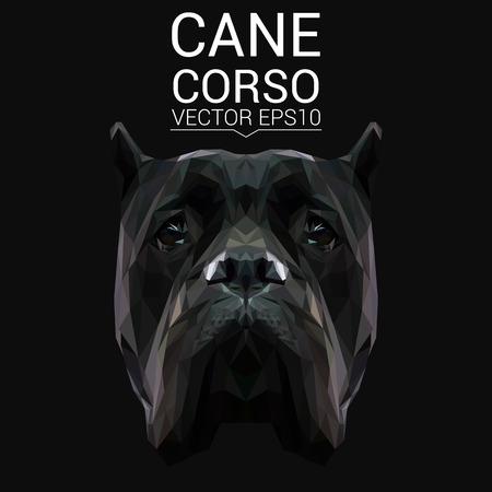 Cane Corso low poly design.