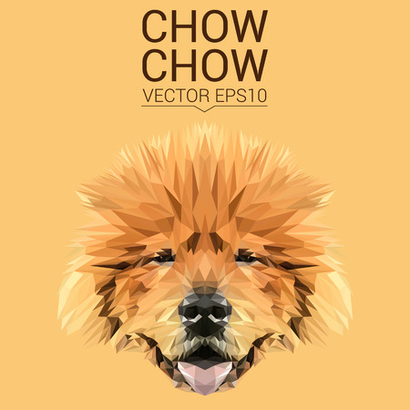 chow: Chow chow low poly design. Illustration