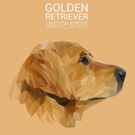 Golden Retriever low poly design. Illustration