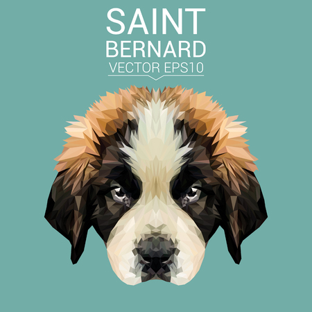 simple life: Saint Bernard dog animal low poly design. Triangle vector illustration.