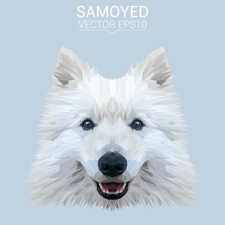 White Samoyed low poly design.