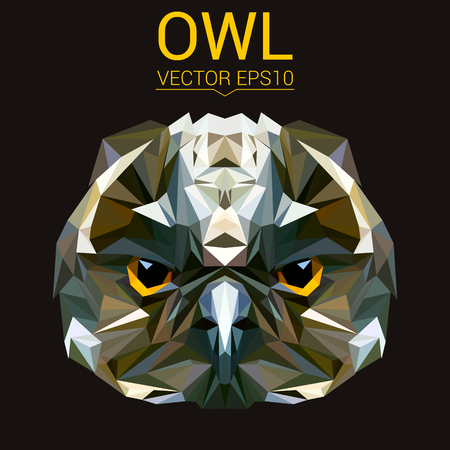 Owl low poly design. 向量圖像