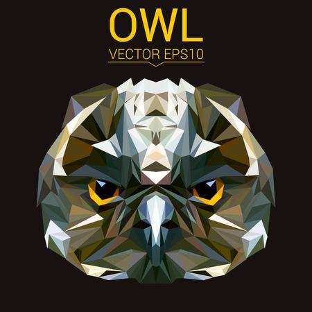 Owl low poly design. Illustration