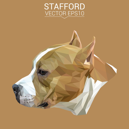 American Staffordshire Terrier dog animal low poly design.