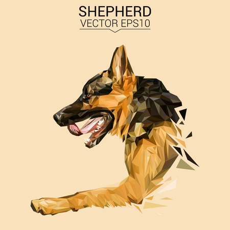 German shepherd Dog animal low poly design.
