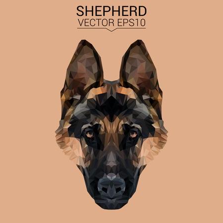 German shepherd Dog animal low poly design.