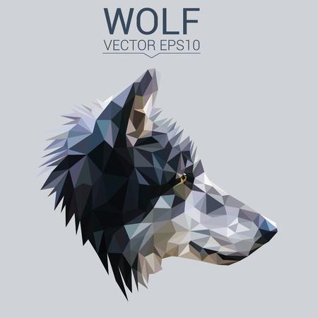 オオカミの低ポリ デザイン。  イラスト・ベクター素材