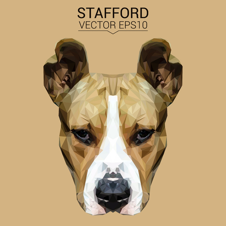 dog: American Terrier dog animal low poly design vector illustration.