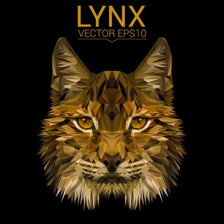 Lynx は猫動物の低ポリ デザイン ベクトル図です。  イラスト・ベクター素材