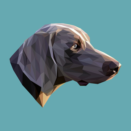 Dog low poly design. Triangle vector illustration.