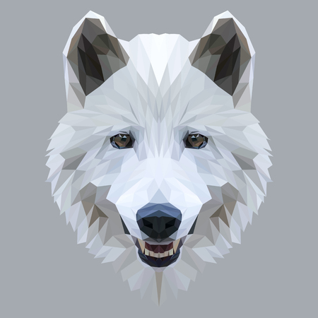 Wolf low poly design. Triangle vector illustration. Иллюстрация