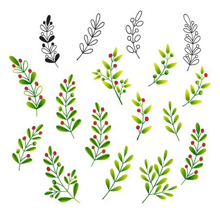 Sprigs with leaves and berries. Set of isolated color vector illustrations for design of invitations, greetings, floral patterns and ornaments. Иллюстрация