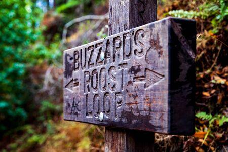 Buzzard's Roost Loop In California