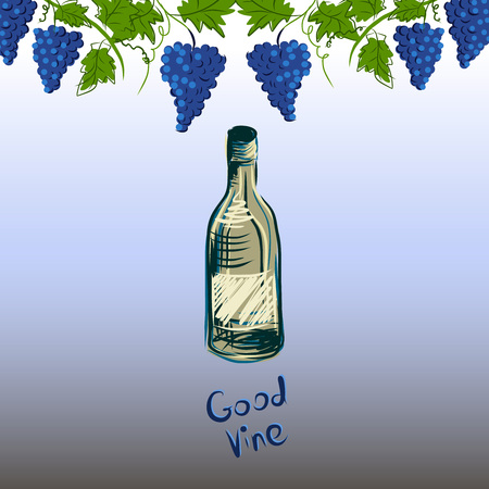 Stylized graphic image of a vine with grapes. Decorative square frame with branch of grapes, grape leaves and vine bottle. Good vine. Vector image.