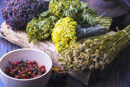 Medicinal plants and herbs composition Concept - Folk or Alternative Medicine