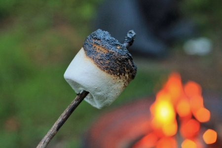 Roasted marshmallow in front of a camp fire Banco de Imagens - 30945936