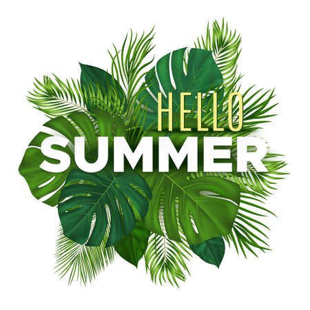 Summer tropical banner with green palm leaves on white background. Vector plant background for leaflet, banner, printing.