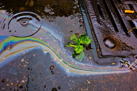 Petrol Oil on a Road Running Down a Gutter Drain Stock Photo