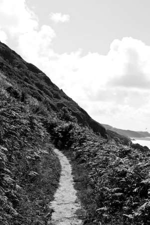 A Scenic South England Coastline Seaside Beautiful View of the Sea  No People 版權商用圖片