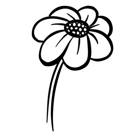 A Logo Design Of a Wildflower Flower Icon Buttercup, Daisy, Dandelion