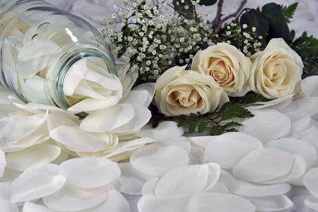 feminine: Feminine White Roses Along With Babys Breath