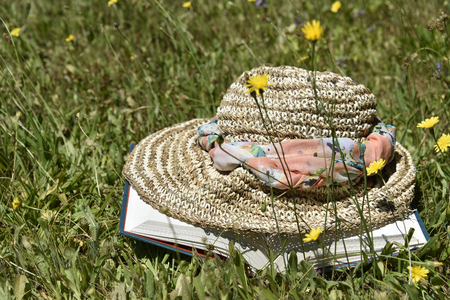 unwind: Hat and book in field of dandelions Stock Photo