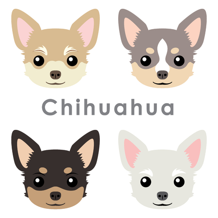 Vector cute chihuahua dog heads illustration