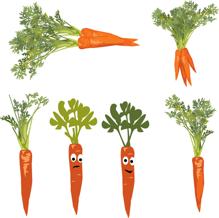 carrot with a face, objects on white background Stock Illustratie