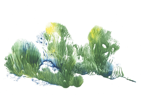 spring trees abstraction drawing paint