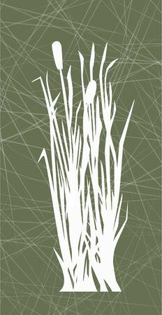 reeds on the green background, white reed illustration Standard-Bild - 125432066