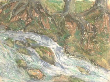 mountain river among the cedar trees, summer landscape Standard-Bild - 125432067