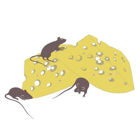 rats and cheese on a white background illustration Standard-Bild - 127106063