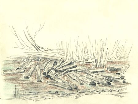 a pile of logs lie in the water, pencil illustration
