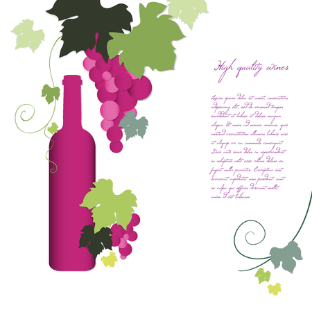 red grape: Bottle of wine and the vine. Vector illustration EPS10 Illustration