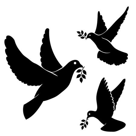 흰색 배경에 올리브 분기와 비행 비둘기의 벡터 검은 실루엣을 설정합니다.