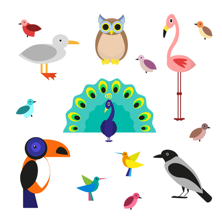Set of cartoon birds in a flat style isolated on white background. Vector illustration
