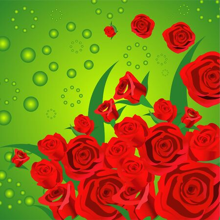 saturated: Lot of reddish rose make an attractive flower background.