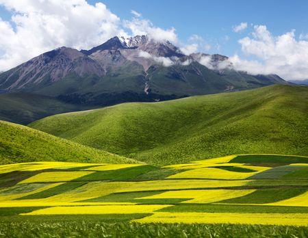 plateau: China Plateau Landscape
