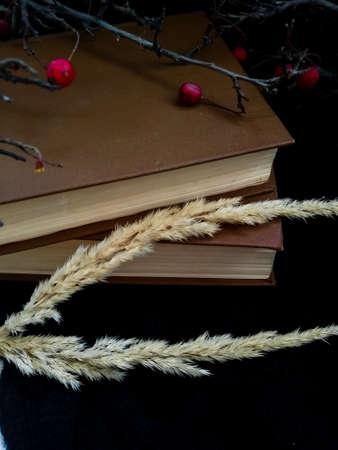 Spikelets near old books Archivio Fotografico