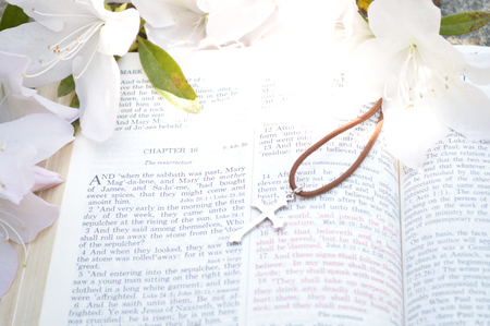 scripture: Mark 16 Easter Sunday scripture background with flowers.