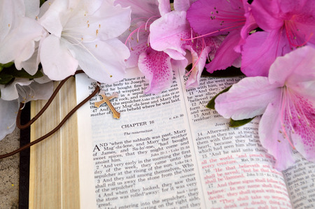 resurrect: Mark 16 Easter Sunday scripture background with flowers.