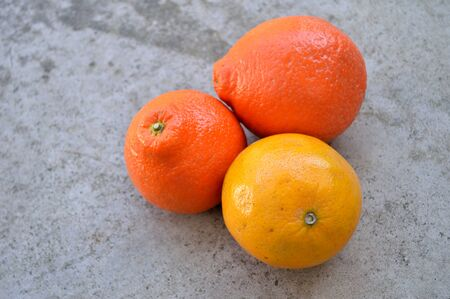 valencia orange: Tangelos and a valencia orange in a threesome against gray concret background