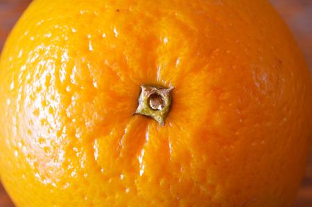 valencia orange: Extreme closeup of Valencia orange