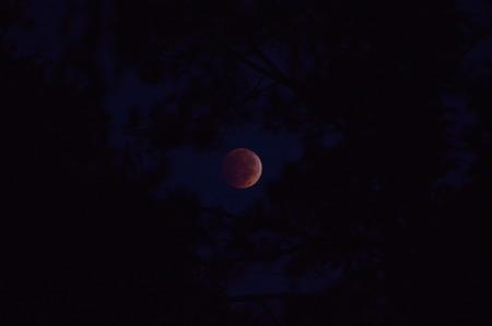 lunar eclipse: Lunar eclipse of October 2014