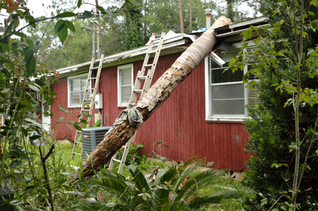 Tornado damage in Florida, queen palm tree fallen on the roof of a house and breaking the roof and the eave. Damage from an EF0 tornado. Fronds and top of the palm tree have been removed by cleanup crew, leaving only the trunk.