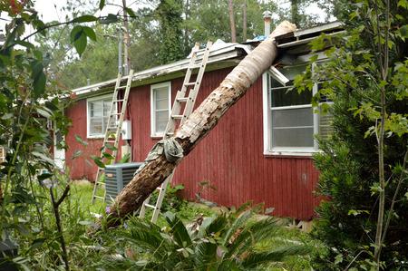 arbol de problemas: daños del tornado en Florida, árbol de palma reina caído sobre el tejado de una casa y romper el techo y el alero. Los daños causados ??por un tornado EF0. Frondas y parte superior del árbol de palma han sido retirados por personal de limpieza, dejando sólo el tronco.