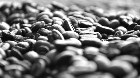 Closeup of coffee beans in black and white Stock Photo